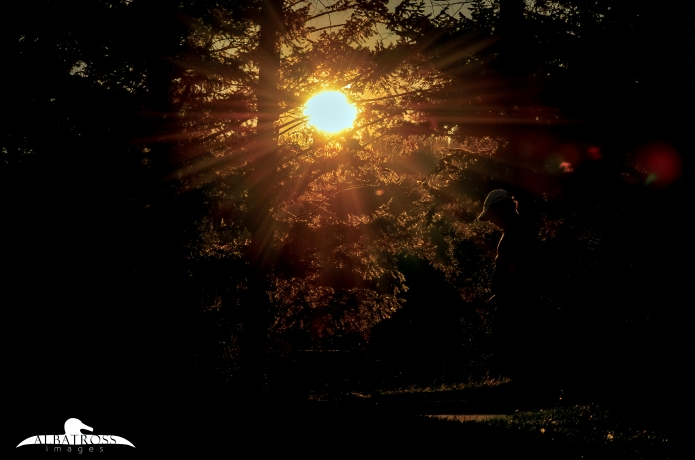 sunsetbelbsalba